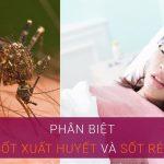 Tìm hiểu về bệnh sốt rét và sốt xuất huyết – Nguyên nhân và cách phòng ngừa